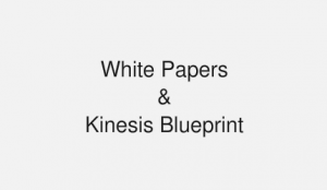 white-papers-and-kinesis-blueprint